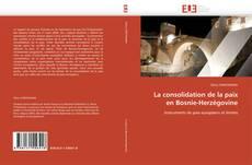 Bookcover of La consolidation de la paix en Bosnie-Herzégovine