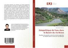Capa do livro de Géopolitique de l'eau dans le Bassin du rio Bravo