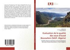Copertina di Evaluation de la qualité des eaux d'oued Bousselem (Sétif- Algérie)