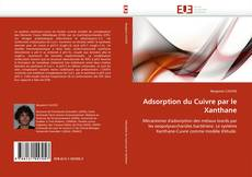 Bookcover of Adsorption du Cuivre par le Xanthane