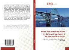 Rôles des ultrafines dans les bétons industriels à hautes performances的封面