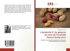 Обложка L'extrémité 3' du génome du virus de l'arachide Peanut clump virus