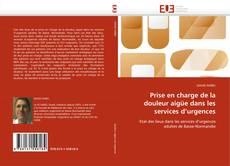 Bookcover of Prise en charge de la douleur aigüe dans les services d'urgences