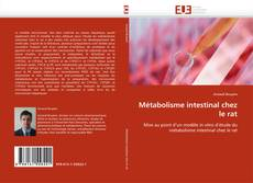 Capa do livro de Métabolisme intestinal chez le rat