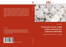 Copertina di Évaluation d'une argile molle renforcée par colonnes ballastées