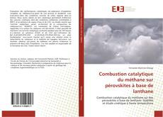Bookcover of Combustion catalytique du méthane sur pérovskites à base de lanthane