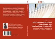 Bookcover of Assimilation Variationelle de Données: Une Application en Hydrologie