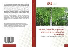 Couverture de Action collective et gestion des ressources naturelles en Afrique
