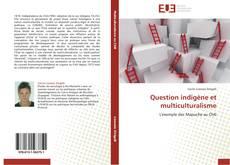 Bookcover of Question indigène et multiculturalisme