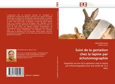 Couverture de Suivi de la gestation chez la lapine par échotomographie