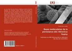 Buchcover von Bases moléculaires de la persistance des rétrovirus foamy