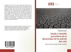 Bookcover of Etude a l'échelle parcellaire de la dynamique de la salinité des sols