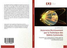 Bookcover of Assurance Durcissement par la Technique des Débits Commutés