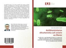 Bookcover of Antibiorésistance d'Escherichia coli aviaire au Maroc