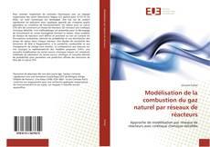 Portada del libro de Modélisation de la combustion du gaz naturel par réseaux de réacteurs
