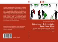Обложка Déterminant de la mortalité infantile au Bénin