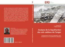 Buchcover von Analyse de la liquéfaction des sols sableux de Tanger