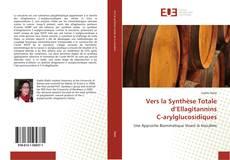 Portada del libro de Vers la Synthèse Totale d'Ellagitannins C-arylglucosidiques