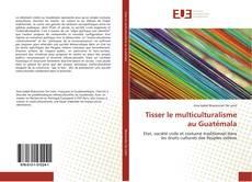 Bookcover of Tisser le multiculturalisme au Guatémala
