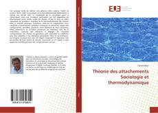 Bookcover of Théorie des attachements  Sociologie et thermodynamique