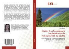 Buchcover von Étudier les champignons impliqués dans la minéralisation du soufre