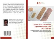 Borítókép a  Cicatrisation cutanée et expérimentation d'un biomatériau - hoz