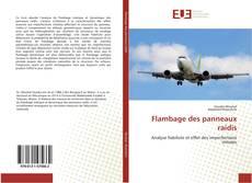 Bookcover of Flambage des panneaux raidis