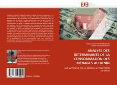 Copertina di ANALYSE DES DETERMINANTS DE LA CONSOMMATION DES MENAGES AU BENIN