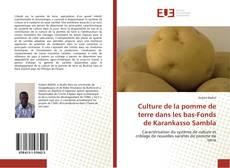 Bookcover of Culture de la pomme de terre dans les bas-Fonds de Karankasso Sambla