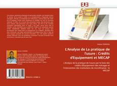 Capa do livro de L'Analyse de La pratique de l'usure : Crédits d'Equipement et MECAP