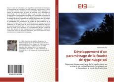 Bookcover of Développement d'un paramétrage de la foudre de type nuage-sol
