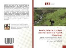 Bookcover of Productivité de la chèvre naine de Guinée à l'Ouest Cameroun