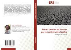 Bookcover of Benin: Gestion du foncier par les collectivités locales
