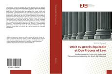 Bookcover of Droit au procès équitable et Due Process of Law