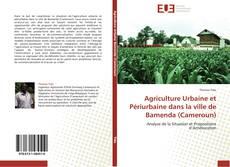 Capa do livro de Agriculture Urbaine et Périurbaine dans la ville de Bamenda (Cameroun)