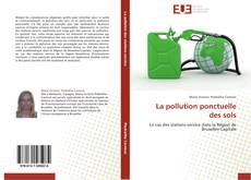 Bookcover of La pollution ponctuelle des sols