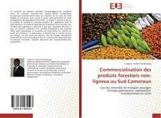 Bookcover of Commercialisation des produits forestiers non-ligneux au Sud Cameroun