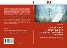 Обложка L'impact macro-économique d'un consortium d'exploitation pétrolière