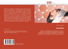 Bookcover of Candida