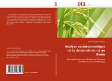 Couverture de Analyse socioéconomique de la demande du riz au Bénin