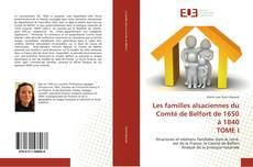 Les familles alsaciennes du Comté de Belfort de 1650 à 1840  TOME I的封面