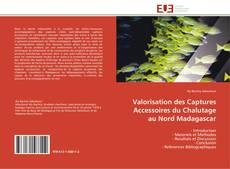 Valorisation des Captures Accessoires du Chalutage au Nord Madagascar kitap kapağı