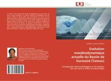 Bookcover of Evolution morphodynamique actuelle du Bassin de Gorouizé (Tamou)