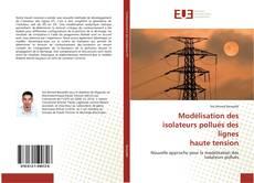 Capa do livro de Modélisation des isolateurs pollués des lignes haute tension