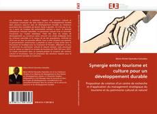 Bookcover of Synergie entre tourisme et culture pour un développement durable