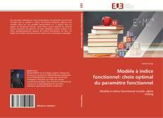 Portada del libro de Modèle à indice fonctionnel: choix optimal du paramètre fonctionnel