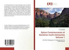 Epices Camerounaises et Bactéries multi-résistantes Volume 1的封面