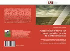 Portada del libro de Andosolisation de sols sur cone strombolien récents de monts bamboutos