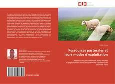 Bookcover of Ressources pastorales et leurs modes d'exploitation