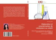 Elaboration et caractérisation de catalyseurs au cobalt kitap kapağı